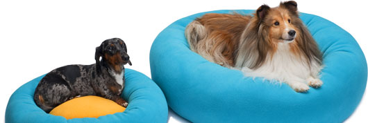 Dachshund and Sheltie in Cozy Puff dog beds