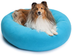 Sheltie on Cozy Puff dog bed